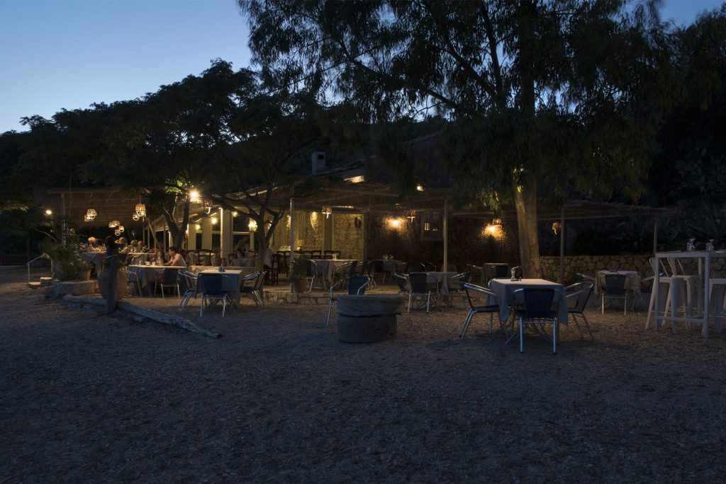 Eucalyptus Taverna